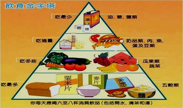 膳食营养金字塔